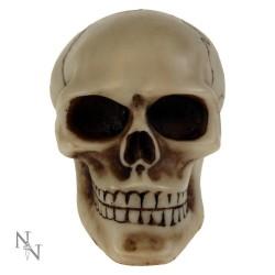 Hlavice řadící páky - Skull