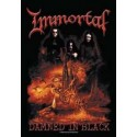 Vlajka na zeď s kapelou - Immortal - Damned In Black