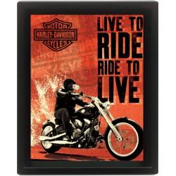 3D Obraz v rámu - Ride To Live, Live To Ride