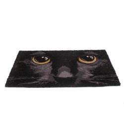Rohožka - Cat