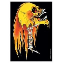Vlajka Metallica - Skull And Flames
